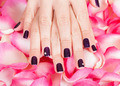 Woman with beautiful nails holding petals - PhotoDune Item for Sale