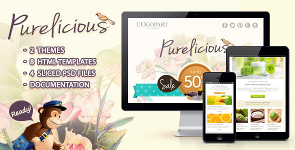 ThemeForest Purelicious Email Template 3791419