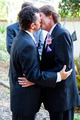 Gay Wedding Kiss - PhotoDune Item for Sale
