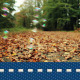 Autumn Bubble - VideoHive Item for Sale