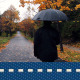 Autumn Rain Walk  - VideoHive Item for Sale