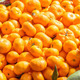 Fresh organic oranges on display on sunny day. - PhotoDune Item for Sale