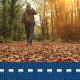 Autumn Walk In Forest - VideoHive Item for Sale