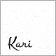 Kari WordPress