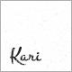 Kari WordPress