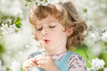 Child blowing on dandelion - PhotoDune Item for Sale