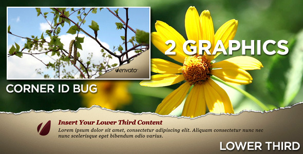 After Effects Project - VideoHive Torn Lower Third 409877
