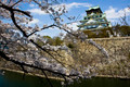 Osaka Castle Japan with Cherry (Sakura) Blossoms - PhotoDune Item for Sale