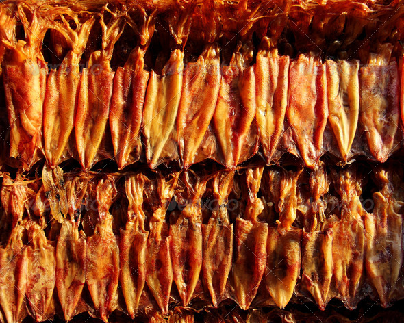 PhotoDune dried squid 3825266
