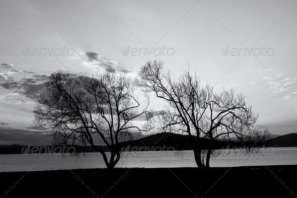 black and white lake landscape - Stock Photo - Images