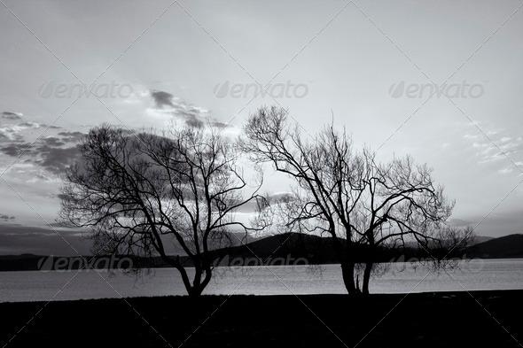 black and white lake landscape - Stock Photo - Images