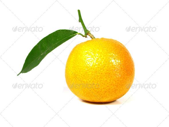 PhotoDune Tangerine 3826832