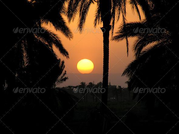 PhotoDune The Nile sunset ll 3826833