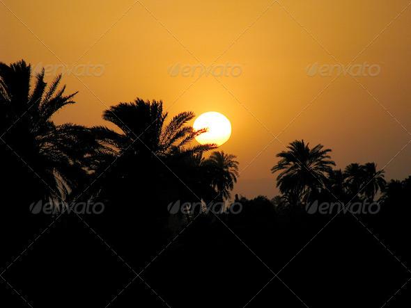 PhotoDune The Nile sunset lV 3826879