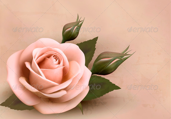 GraphicRiver Retro Background with Pink Rose with Bud 3827949