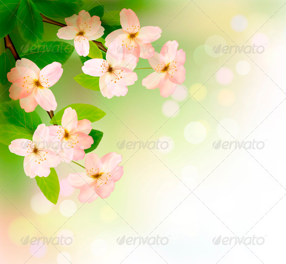 GraphicRiver Spring Background with Blossoming Tree Brunch 3827994