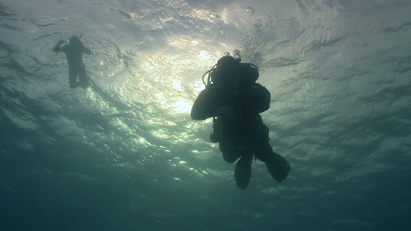 Diver Swims Over Camera