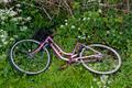 Bike in the roadside - PhotoDune Item for Sale