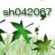 sh042067