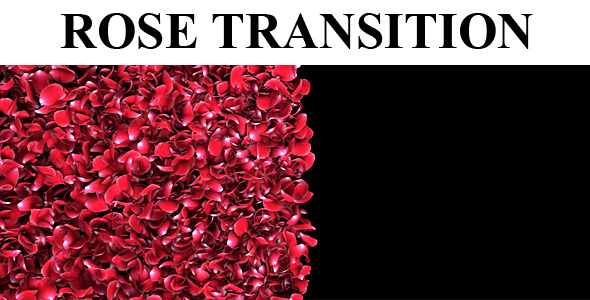 Rose Petal Transition