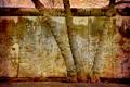 Berlin wall retro - PhotoDune Item for Sale