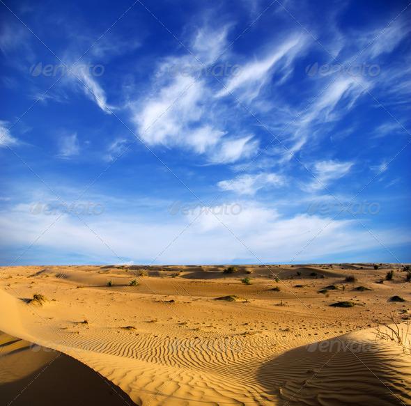 PhotoDune Desert landscape 3851117
