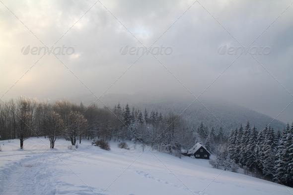 PhotoDune Winter sunset 3851232