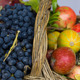 Apples, grapes, pumpkins in a wicker basket - PhotoDune Item for Sale