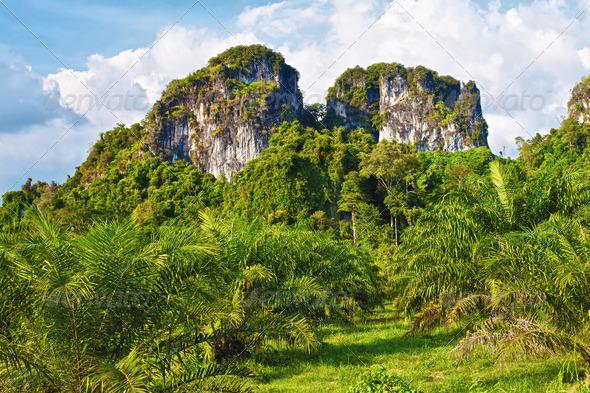 PhotoDune Thai Mountains 3854078