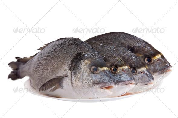 PhotoDune Four dorado fish on white dish isolated on white 3854181