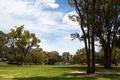 Park - PhotoDune Item for Sale