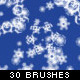 30 Highly detailed Snowflake Brushes - GraphicRiver Item for Sale