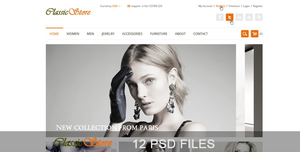 ThemeForest The Online Store PSD Templates 3879926