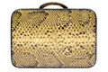 Snakeskin Bag with Clipping Path Isolated on a White Background