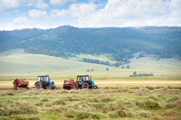 PhotoDune hay harvesting 3883676