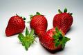 Erdbeere - PhotoDune Item for Sale