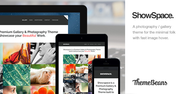 ThemeForest ShowSpace Responsive Gallery Photography Theme 3759618