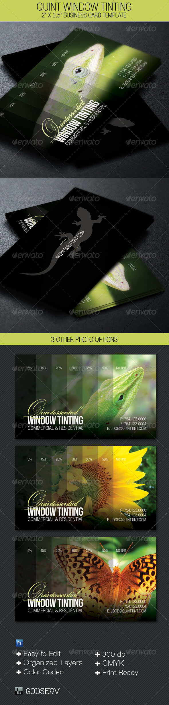 Quint Window Tinting Business Card Template - Industry Specific Business Cards