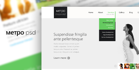 ThemeForest METPO PSD Template 3891339