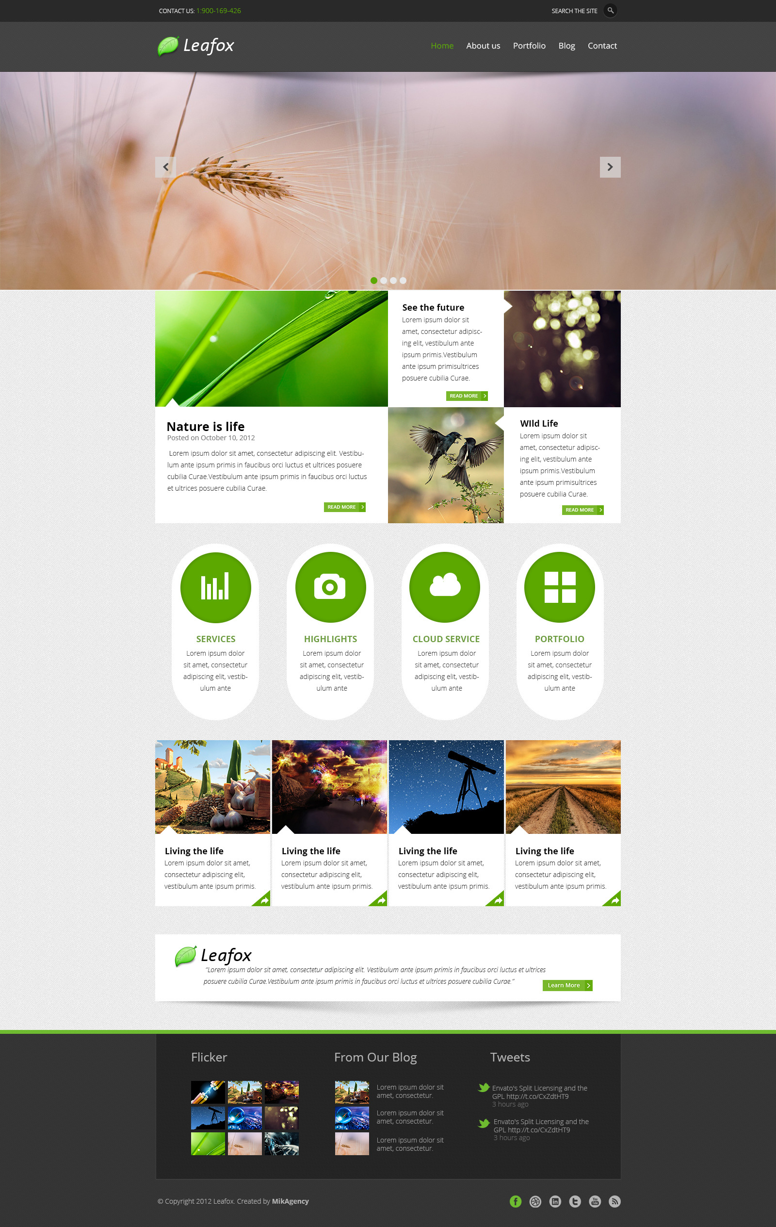 Leafox - Multipurpose PSD Theme