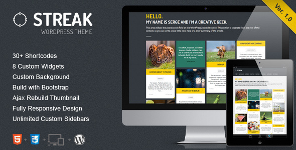 ThemeForest Streak Responsive WordPress Blog Portfolio 3895631