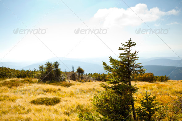 moutain - Stock Photo - Images
