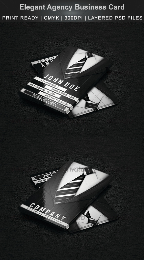 GraphicRiver Elegant Agency Business Card 3825902