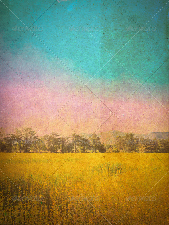 PhotoDune Retro field background 3905656