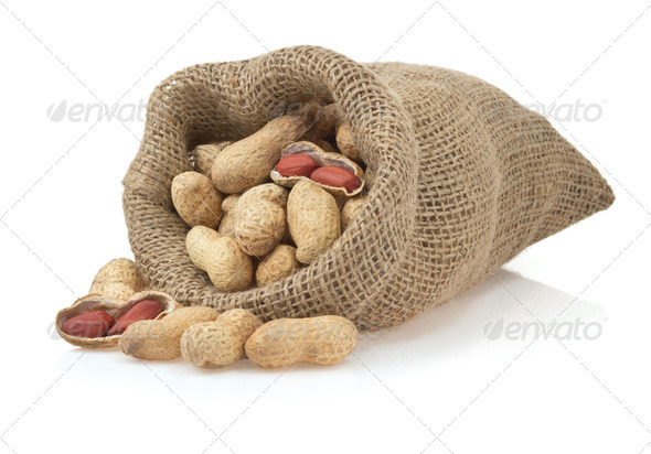 PhotoDune nuts peanuts isolated on white 3905722