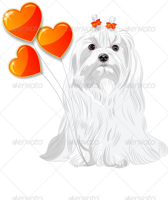 GraphicRiver Valentine Card with Dog Maltese and Hearts 3909796