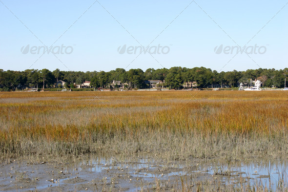 Stock Photography - Low Country Photodune 3918146