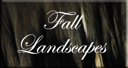 Fall Landscapes
