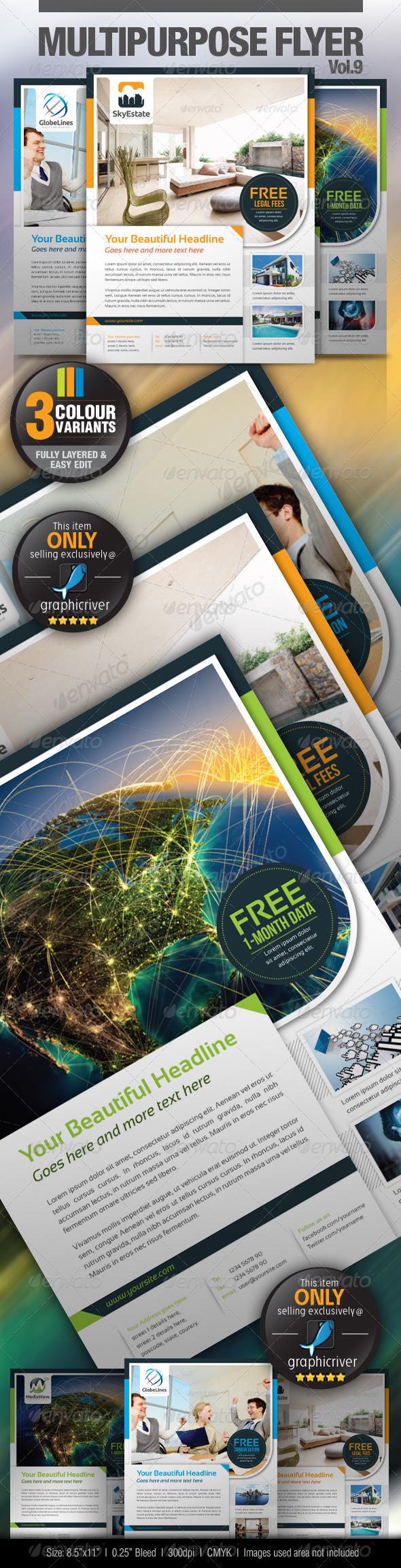 GraphicRiver Multipurpose Business Flyer Vol.9 3919253