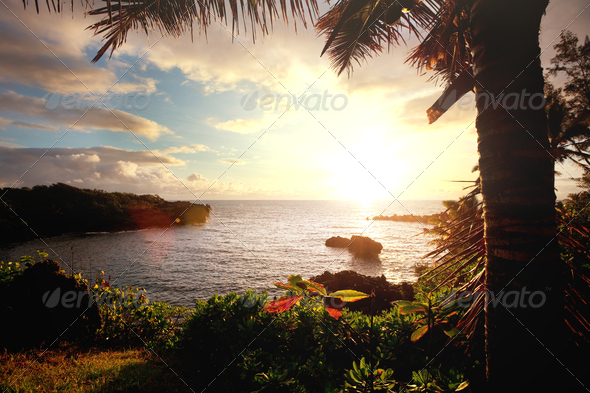Hawaii - Stock Photo - Images